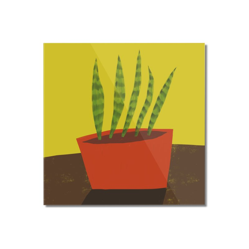 Snake Plant in Red Pot Home Mounted Acrylic Print by Michael Pfleghaar