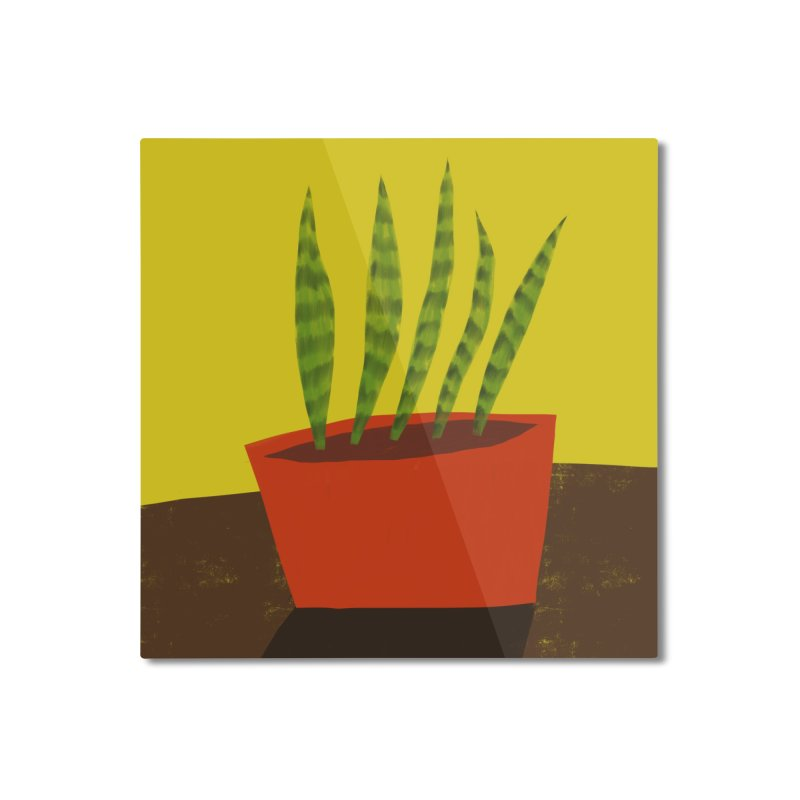 Snake Plant in Red Pot Home Mounted Aluminum Print by Michael Pfleghaar