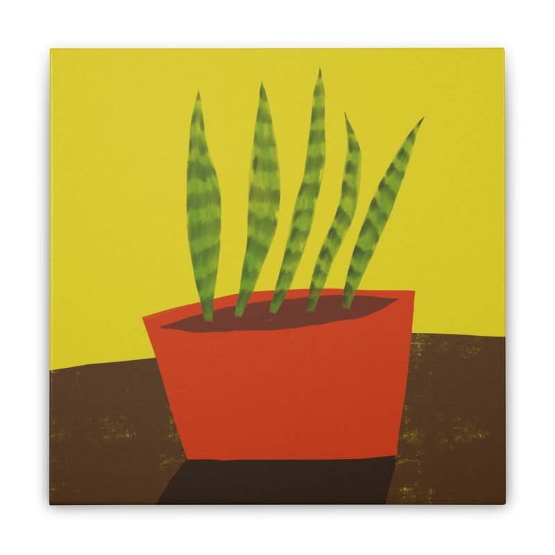 Snake Plant in Red Pot Home Stretched Canvas by Michael Pfleghaar