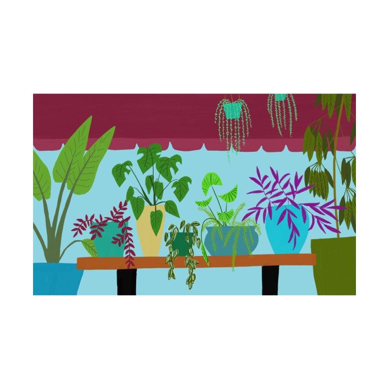 Window Plants by Michael Pfleghaar