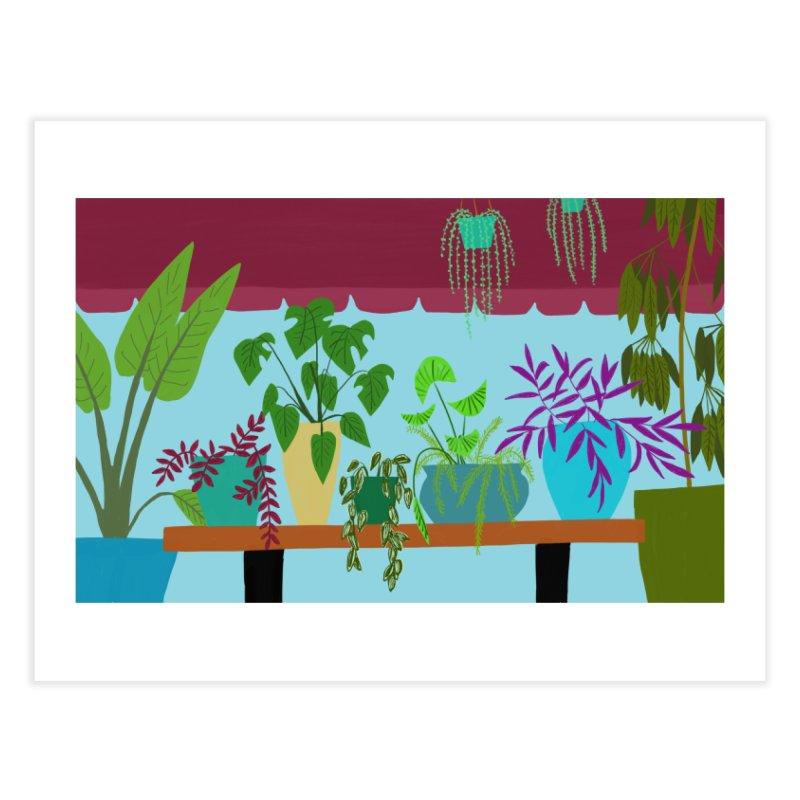 Window Plants Home Fine Art Print by Michael Pfleghaar