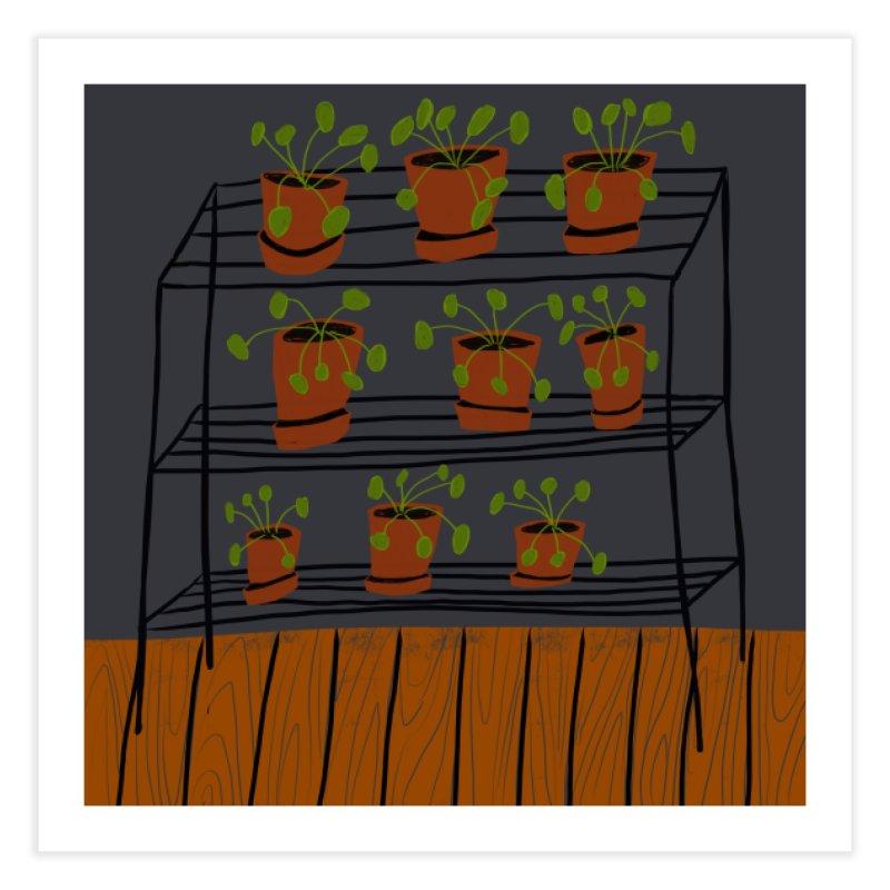Pilea on Plant Stand Home Fine Art Print by Michael Pfleghaar