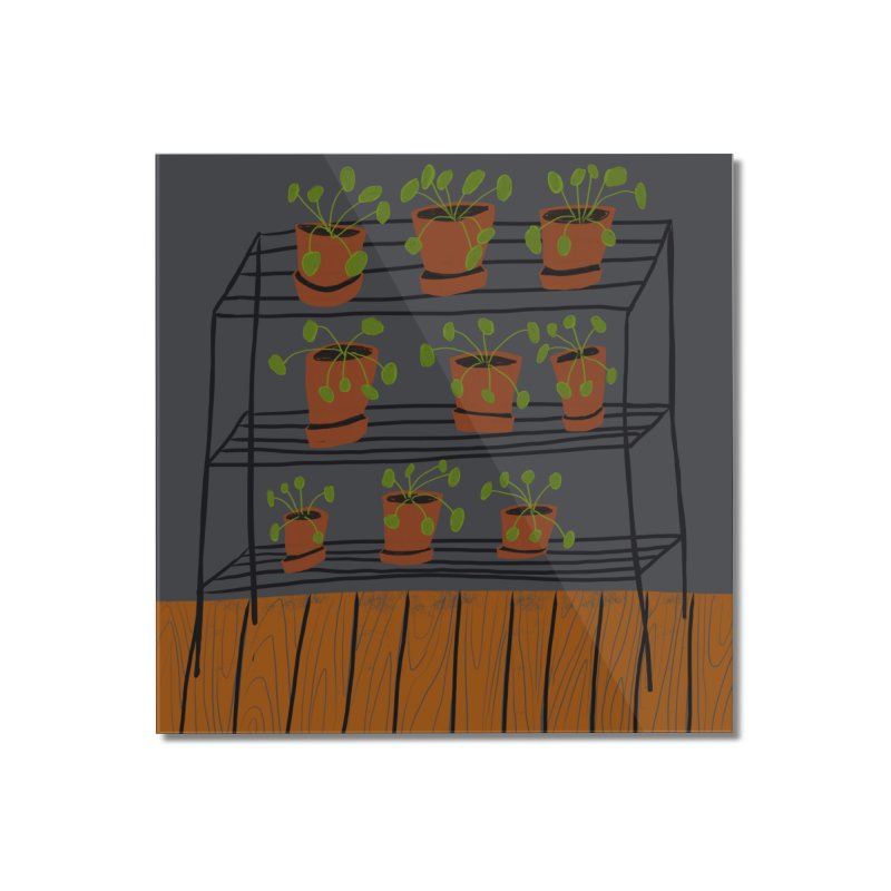Pilea on Plant Stand Home Mounted Acrylic Print by Michael Pfleghaar