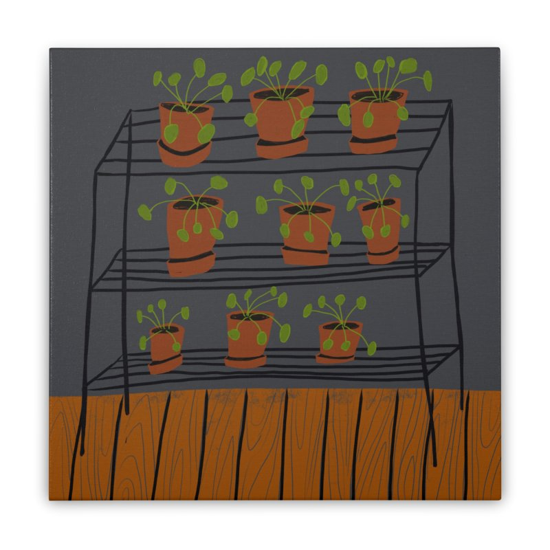 Pilea on Plant Stand Home Stretched Canvas by Michael Pfleghaar
