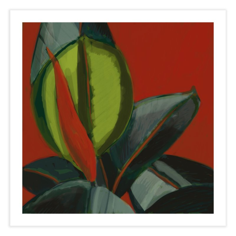 Rubber Plant on Red Home Fine Art Print by Michael Pfleghaar