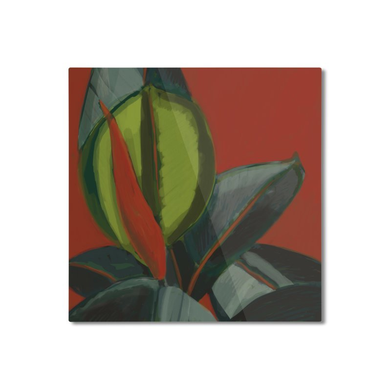 Rubber Plant on Red Home Mounted Aluminum Print by Michael Pfleghaar