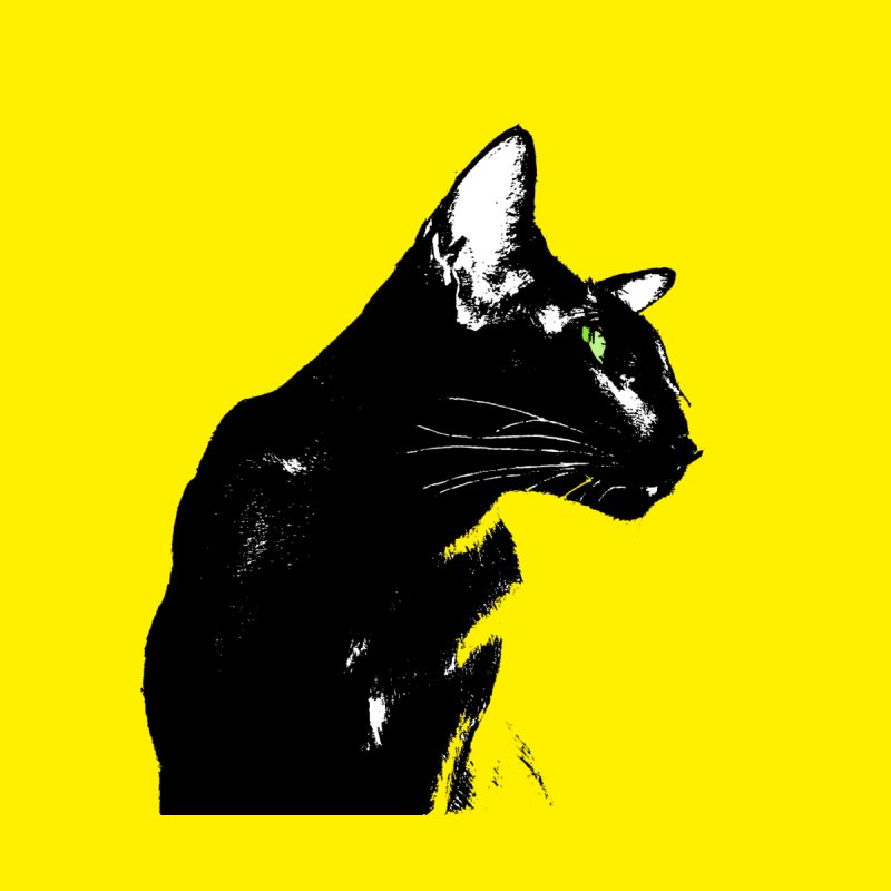 Mr. C. Black (with green eyes and yellow background) by pikeart's Artist Shop