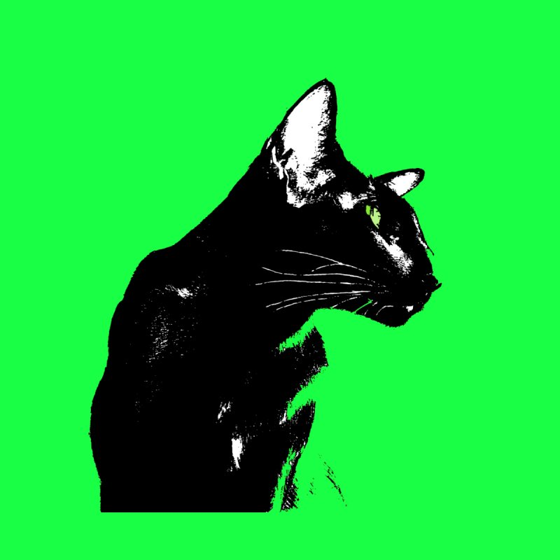 Mr. C. Black (with green eyes and green background) by pikeart's Artist Shop