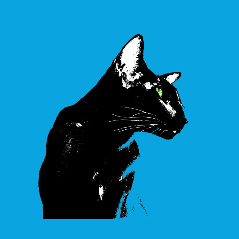 Mr. C. Black (with green eyes and blue background) by pikeart's Artist Shop