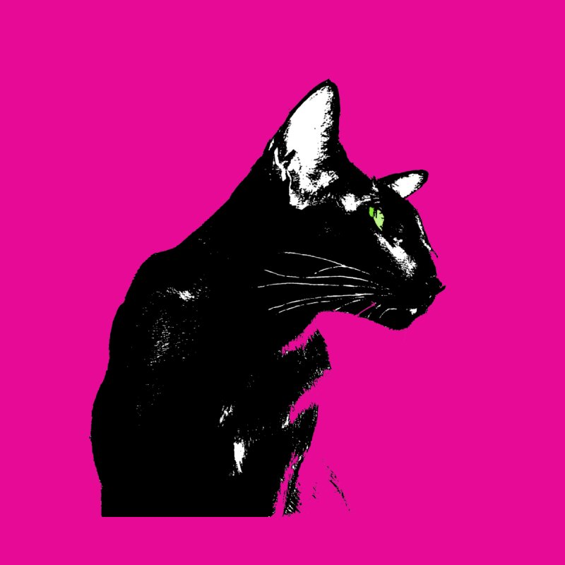 Mr. C. Black (with green eyes and pink background) by pikeart's Artist Shop