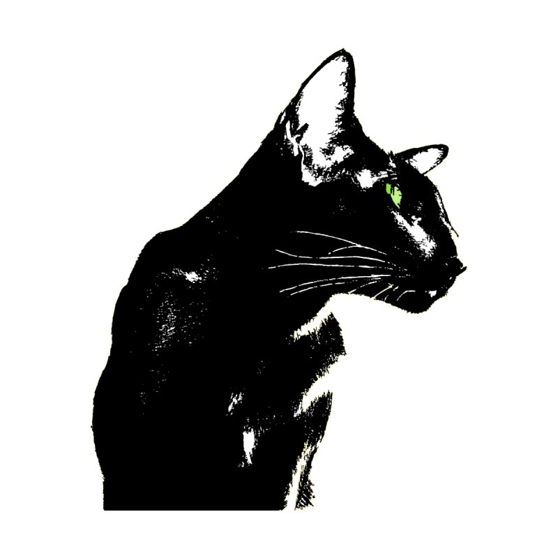 Mr. C. Black (with green eyes)  by pikeart's Artist Shop