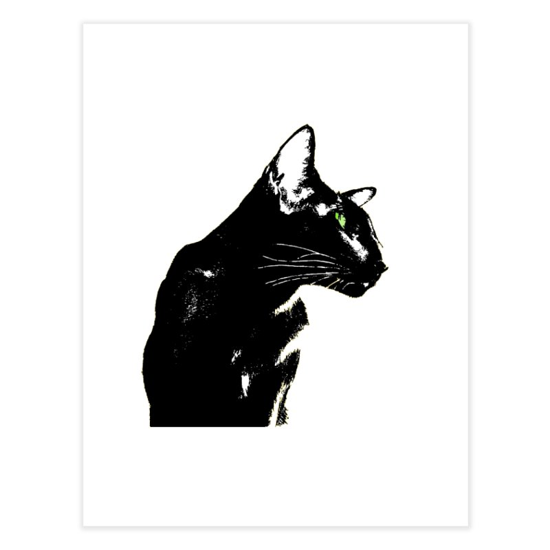 Mr. C. Black  Home Fine Art Print by pikeart's Artist Shop