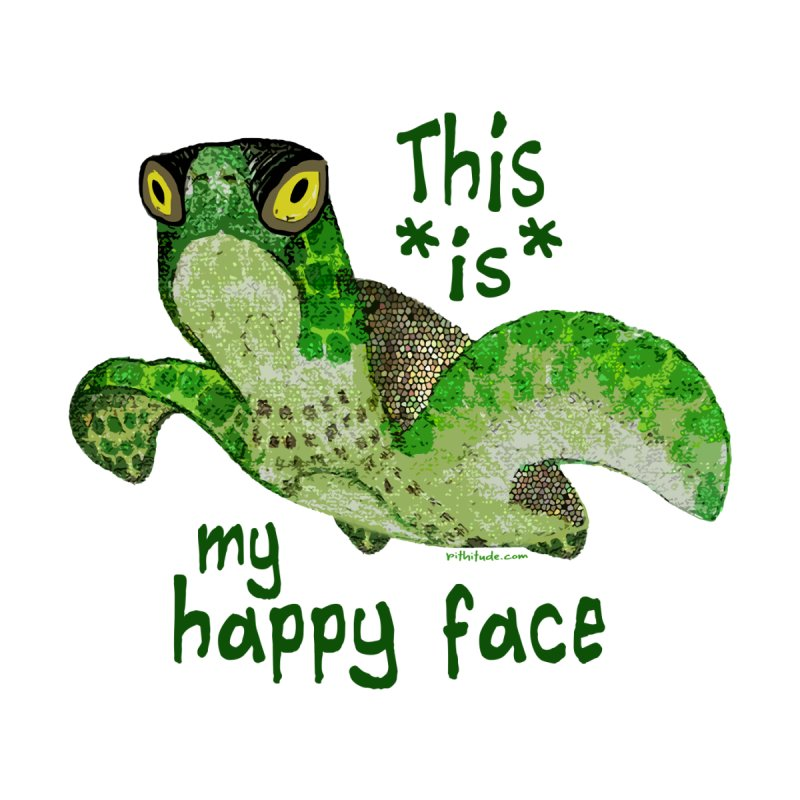 Happy Face Sea Turtle Women's Triblend T-shirt by Pithitude on Threadless