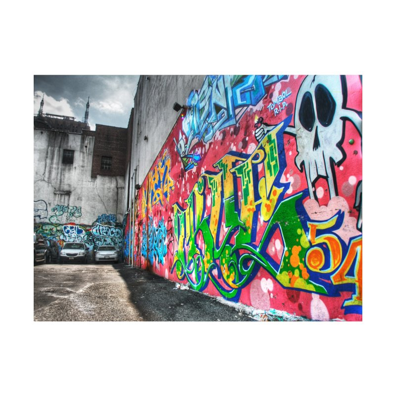 Graffiti Home Fine Art Print by Pixel and Poly's Artist Shop
