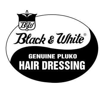 pluko's Artist Shop Logo
