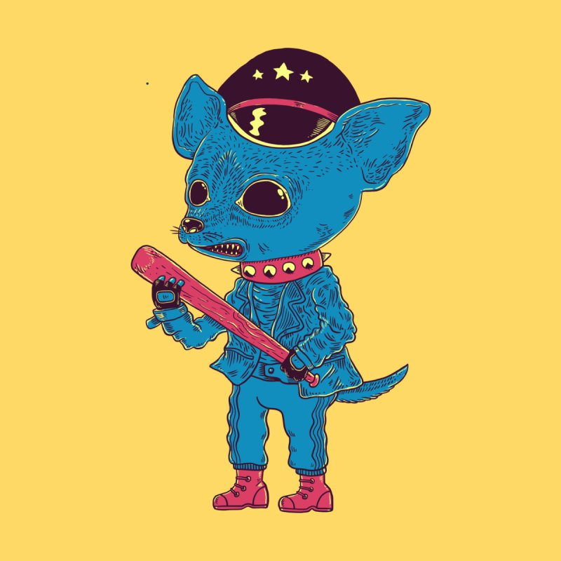 Bad chihuahua by Pepe Rodríguez