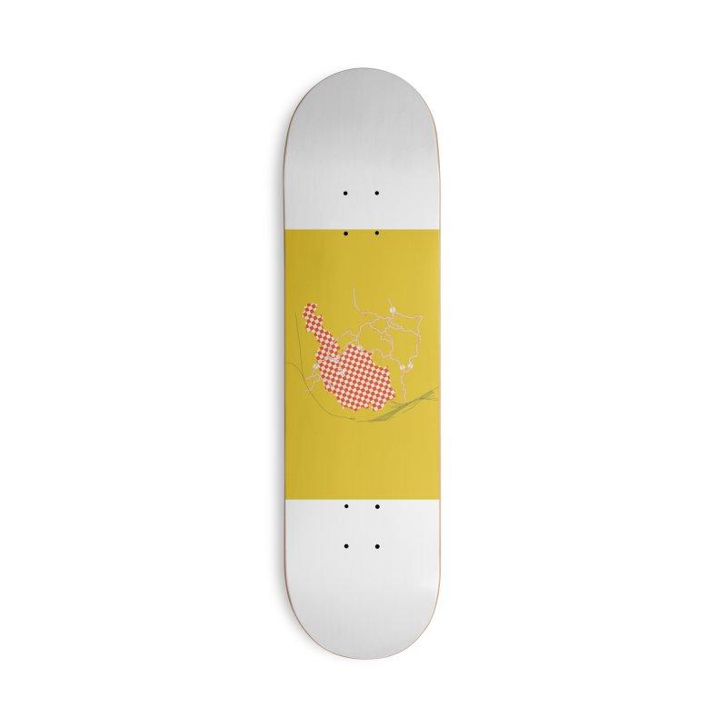 2020.4 Accessories Skateboard by Prate