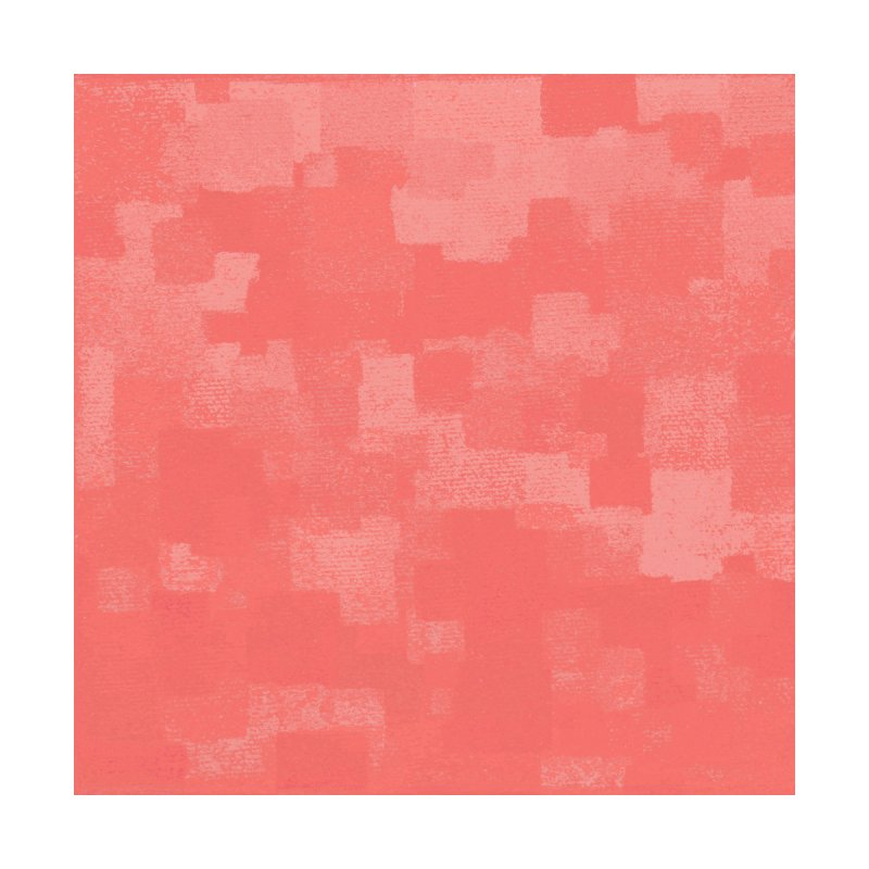 Squares Within Squares Living Coral by Project M's Artist Shop