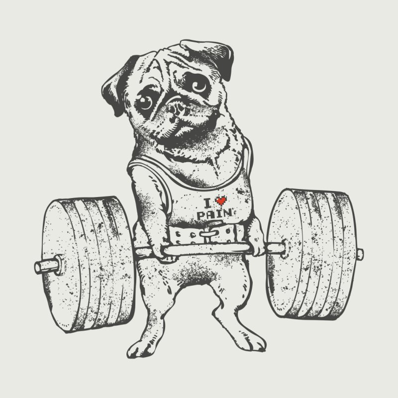 Pug Lift Accessories Bag by Pugs Gym's Artist Shop