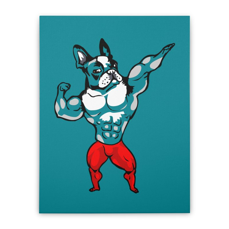 Boston Terrier Bodybuilder Home Stretched Canvas by Pugs Gym's Artist Shop