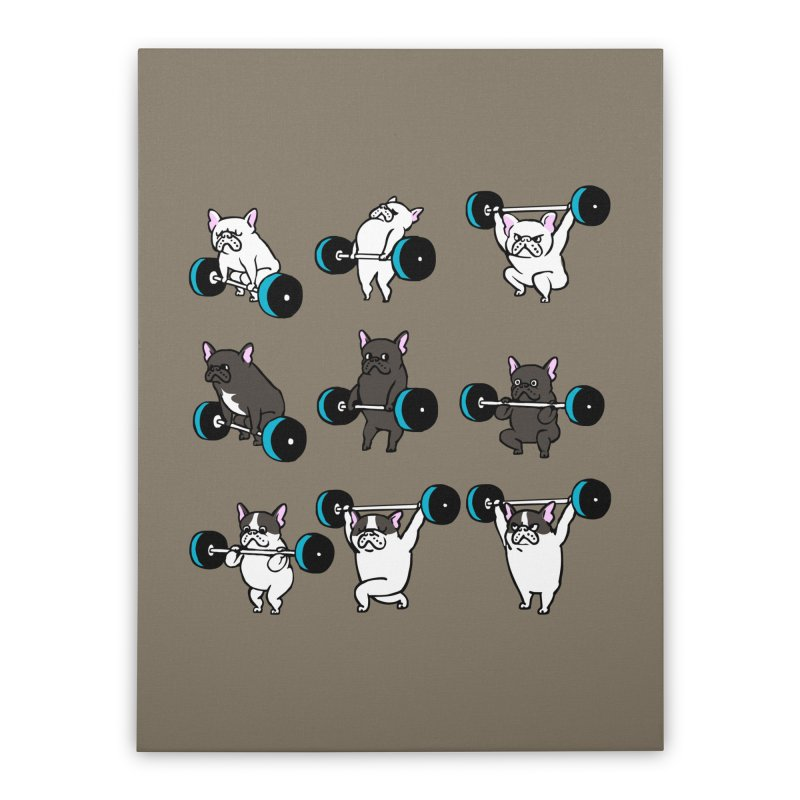 Olympic LIifting  French Bulldog Home Stretched Canvas by Pugs Gym's Artist Shop