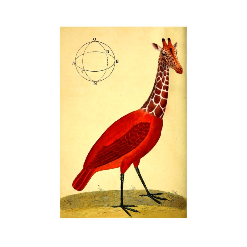 Bird Giraffe Accessories Sticker by Artist Shop of Pyramid Expander