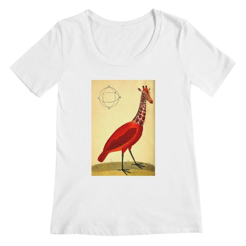 Bird Giraffe Women's Regular Scoop Neck by Artist Shop of Pyramid Expander