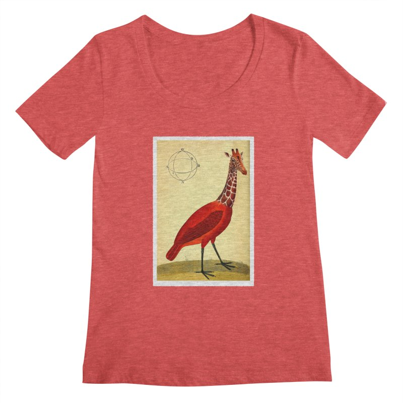 Bird Giraffe Women's Scoopneck by Artist Shop of Pyramid Expander