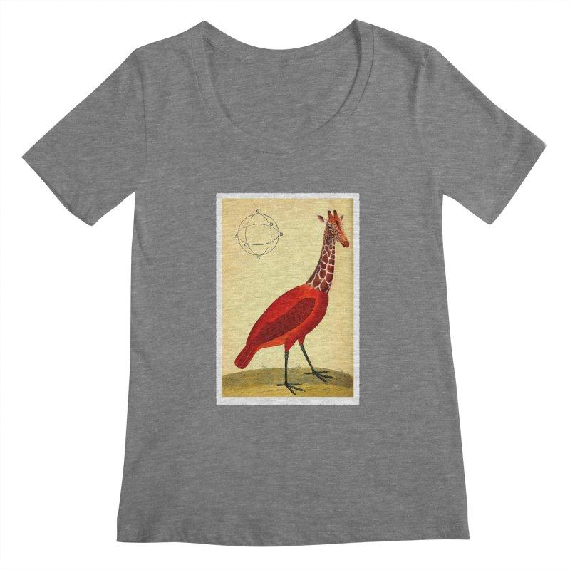 Bird Giraffe Women's Scoopneck by Artist Shop of Pyramid Expander