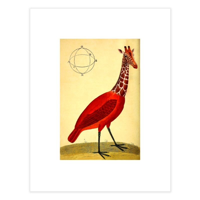 Bird Giraffe Home Fine Art Print by Artist Shop of Pyramid Expander
