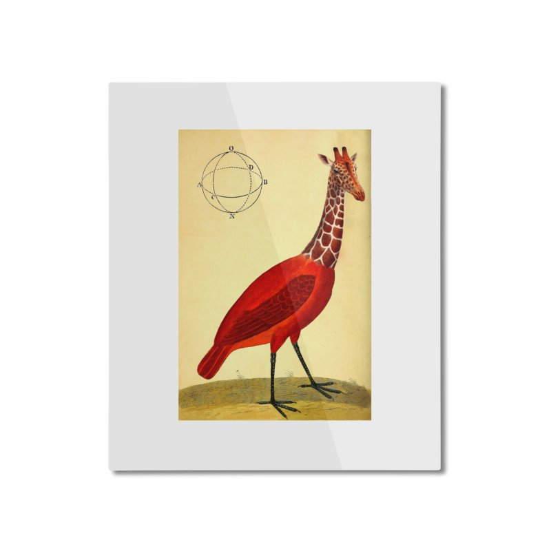 Bird Giraffe Home Mounted Aluminum Print by Artist Shop of Pyramid Expander