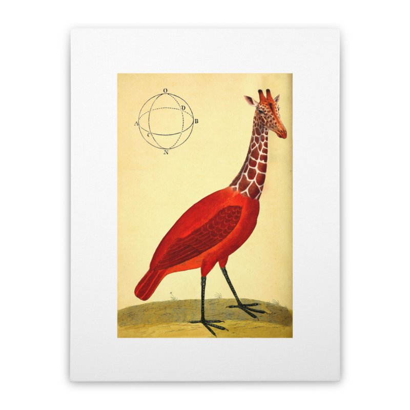 Bird Giraffe Home Stretched Canvas by Artist Shop of Pyramid Expander