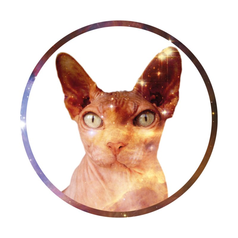 Cosmic Circle Sphynx Cat  None  by radesigns's Artist Shop