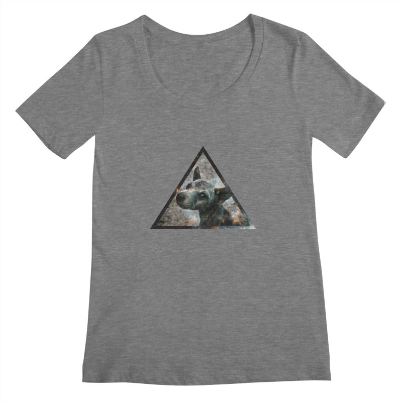 Galactic Dog Women's Scoopneck by radesigns's Artist Shop