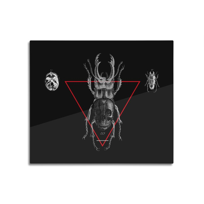 Death Scarab Home Mounted Aluminum Print by radesigns's Artist Shop