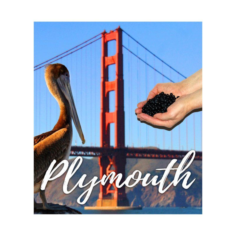 Plymouth by The Rake & Herald Online Clag Emporium