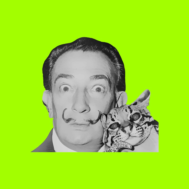 Hero of the Rake & Herald Salvador Dali (and Ocelot) by The Rake & Herald Online Clag Emporium