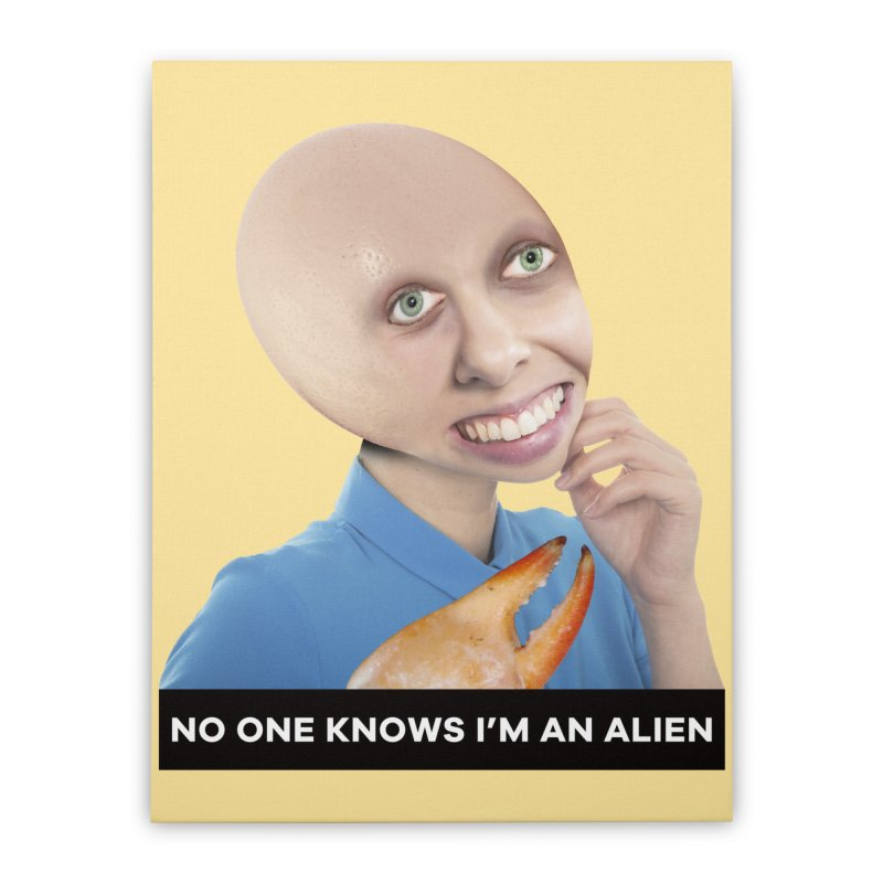 No One Knows I'm an Alien Home Stretched Canvas by The Rake & Herald Online Clag Emporium