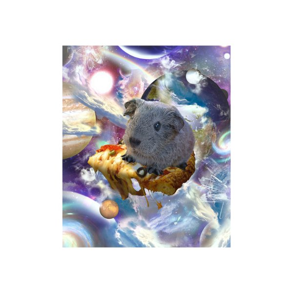 Design for Rainbow Guinea Pig On Pizza In Space