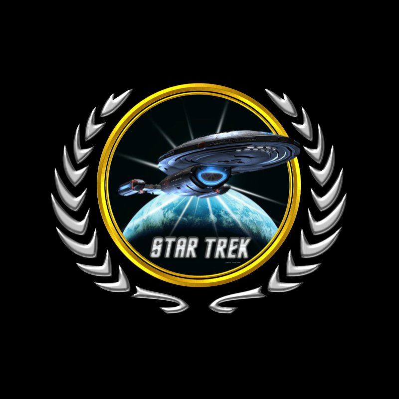 Star trek Federation of Planets Voyager 2 by ratherkool's Artist Shop