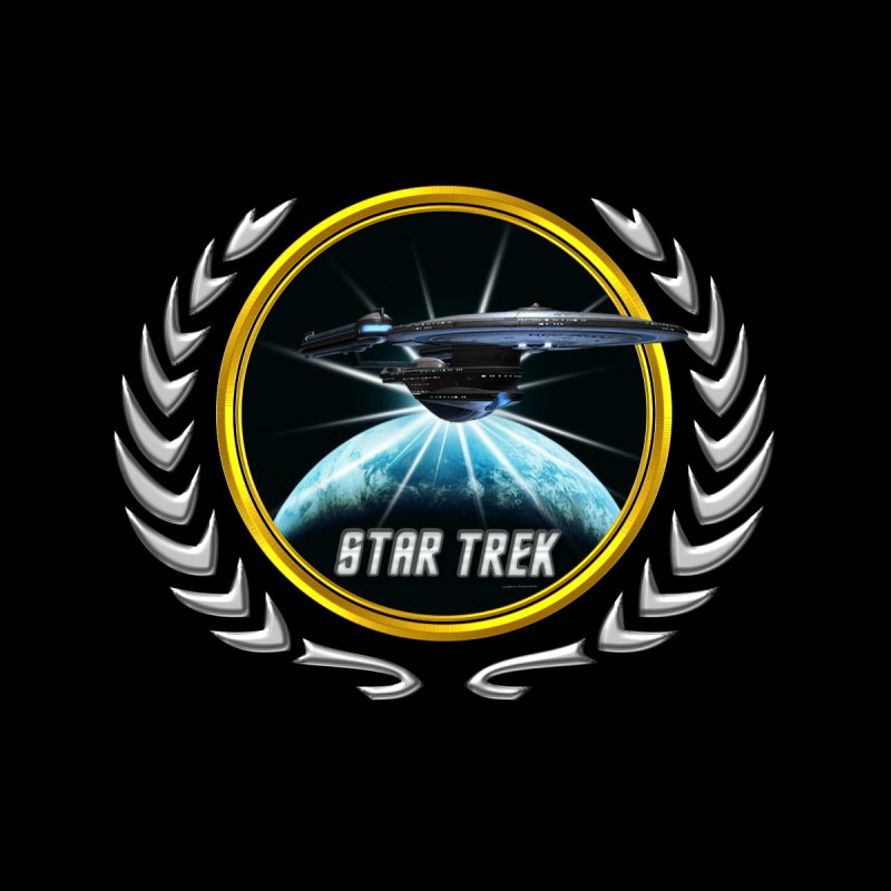 Star trek Federation of Planets excelsior 2 by ratherkool's Artist Shop
