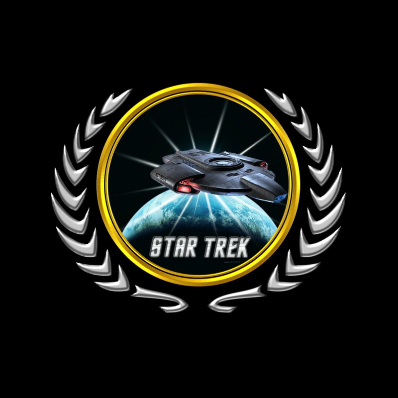 Star trek Federation of Planets defiant 2 by ratherkool's Artist Shop