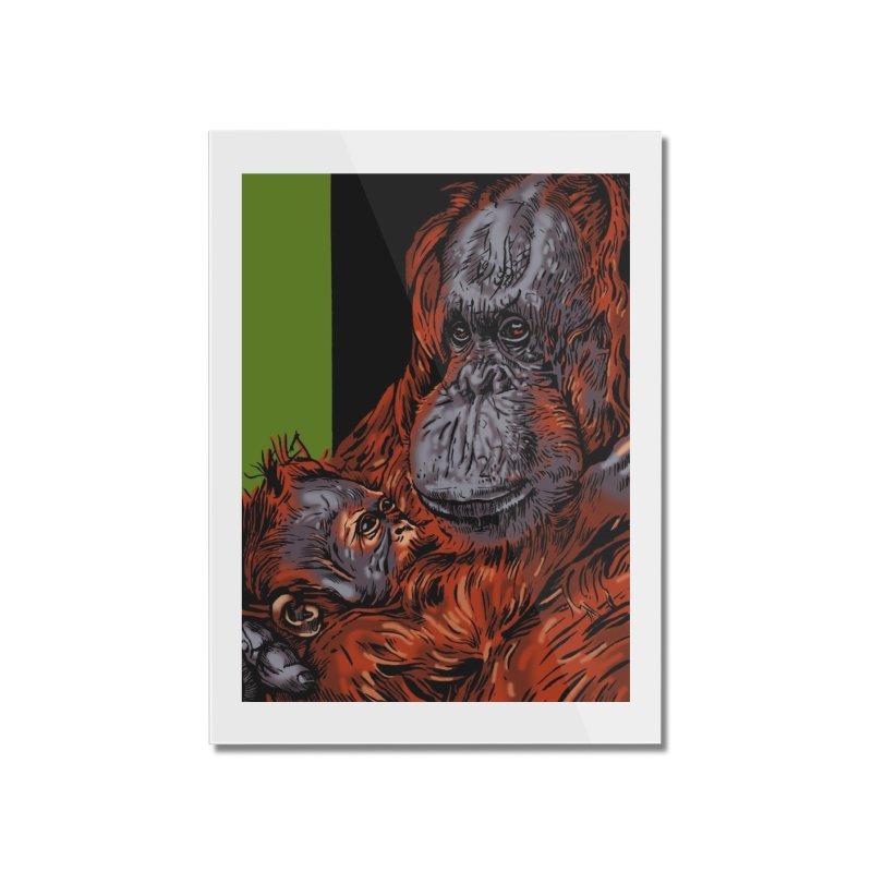 Schizo Pop Orangutan Home Mounted Acrylic Print by schizo pop