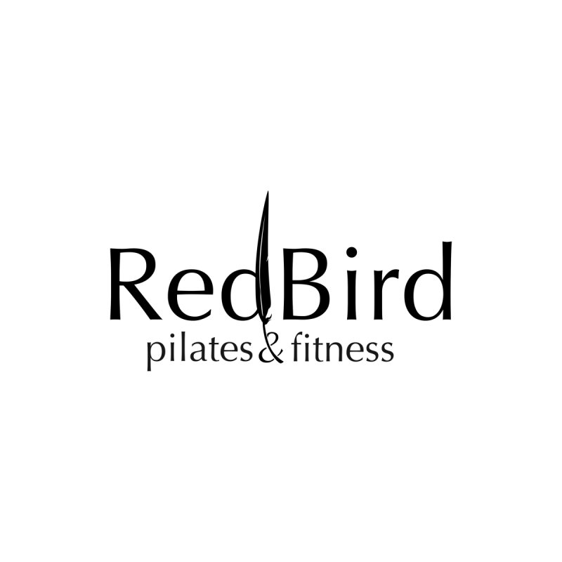 Men's Triblend T-Shirt by RedBird Pilates