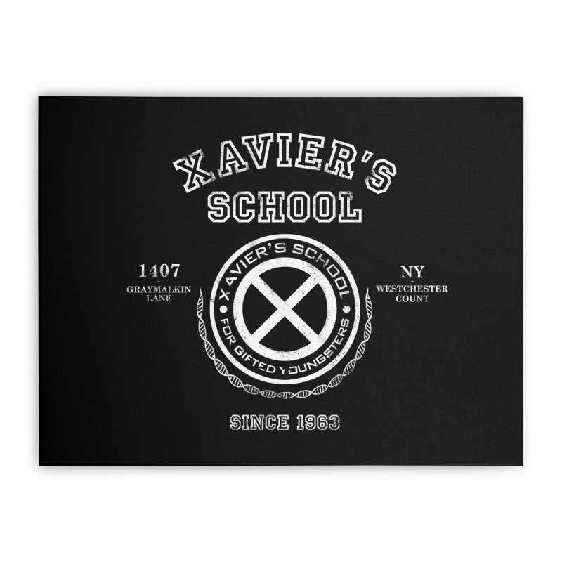 Xavier's School Home Stretched Canvas by Red Bug's Artist Shop
