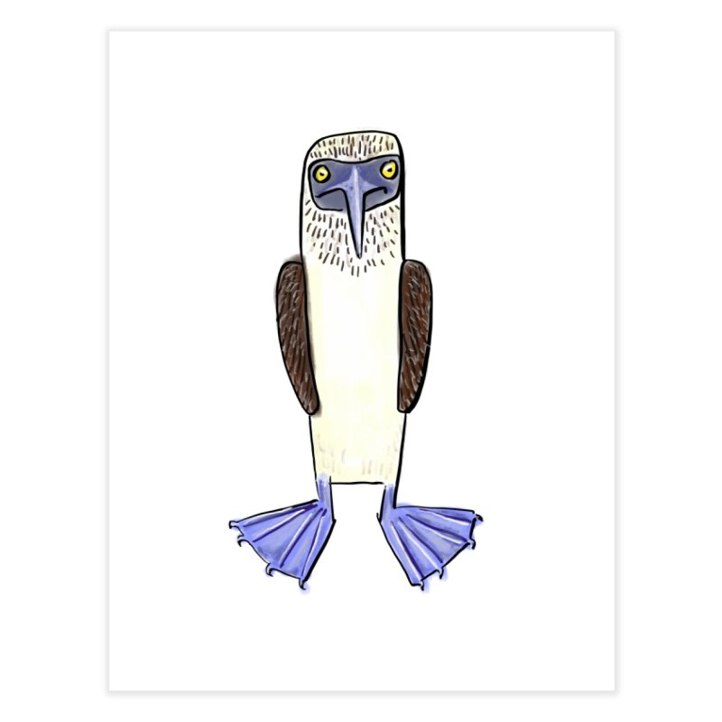 Blue Footed Booby Home Fine Art Print by Renee Leigh Stephenson Artist Shop