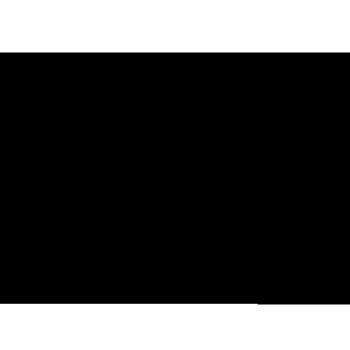 Renee Leigh Stephenson Artist Shop Logo