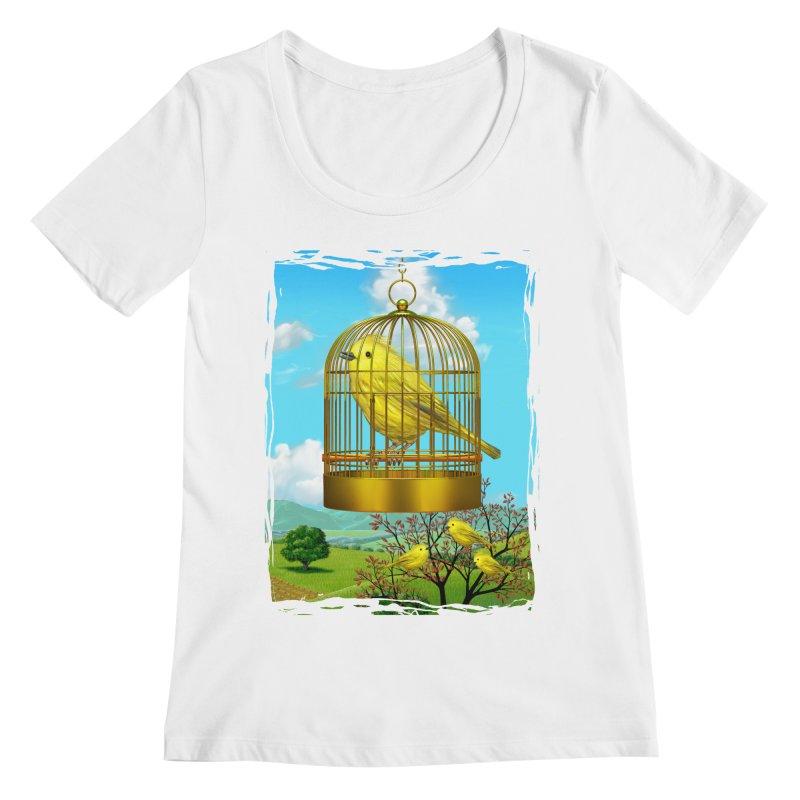 birdcage Women's Scoopneck by richgrote's Shop
