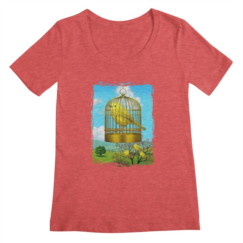 birdcage Women's Scoopneck by richgrote's Shop