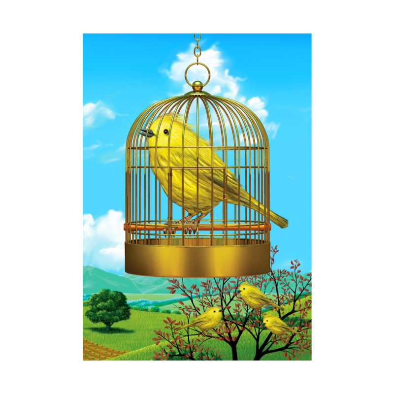 Bird Cage by richgrote's Shop